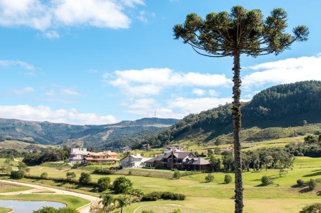 Costa da Serra